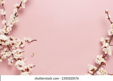 Frühlingshänder Hintergrund mit schönen weißen, blühenden Ästen. Pastellrosa Hintergrund, blühende Blumen. Springtime-Konzept. Flachbildschirm mit Draufsicht Kopienraum.