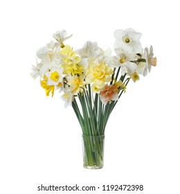 Spring bouquet of daffodils isolated on white background.