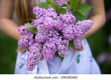 Spring bouquet of lilacs  in woman hands. Lilac flowers. Gardening