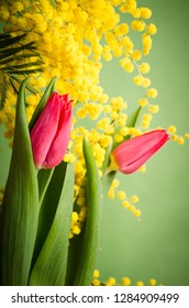Spring bouquet with mimosa and tulips