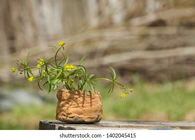 spring bouquet of wild flowers in an old ceramic vase