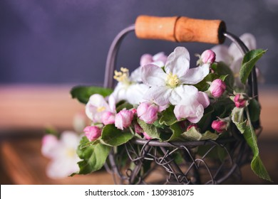 Spring. branches of a blossoming apple-tree in a basket on a wooden background