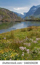 Spring in Breheimen - at the northwest end of Lake Lovatnet, the Loelva drain leaves the lake to flow into the Nordfjord