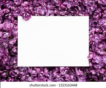 Spring card with lilac flowers. Blank white sheet for notes, copy space for text