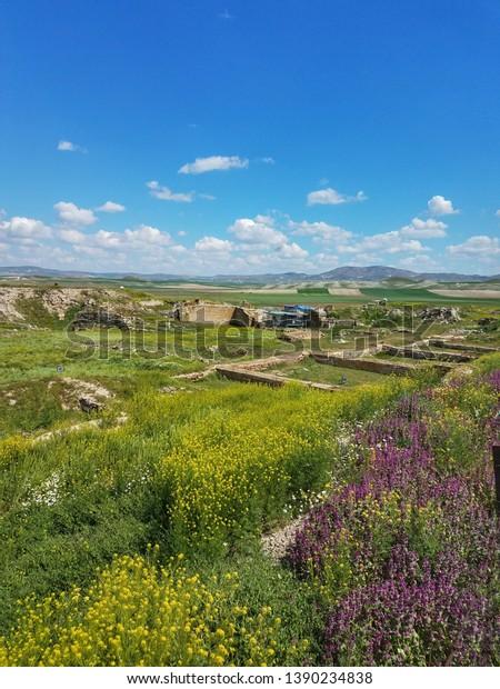 spring-central-anatolia-near-ankara-600w