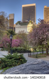 Spring in Central Park, New York City facing the Plaza hotel