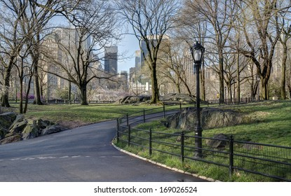 Spring in Central Park, New York City with cherry trees