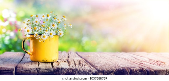 Spring - Chamomile Flowers In Cup On Wooden Table In Garden