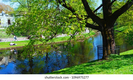 Spring in the city park with a canal