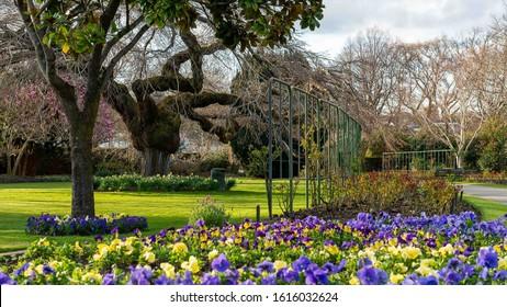 Spring colour at Gore Public Gardens, Southland, New Zealand