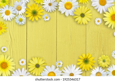 Spring composition. White and yellow daisy flowers on yellow wooden tabletop background.