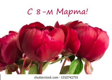 Spring concept. Bouquet of red pions isolated on white background with envelope. Mother's Day or 8th of March festive theme. Close-up with text 8th of March (in russian).