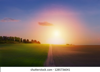 spring countryside landscape; sunrise over spring farmland field and country road