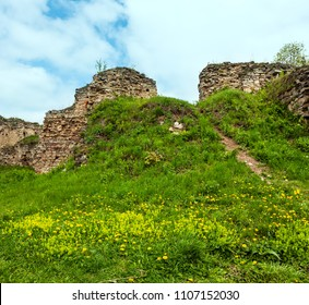 Spring dandelion glade in Jazlovets castle ruins, Buchach District, Ternopil Region, Ukraine.  It was built from the 14th  to the 17th century.