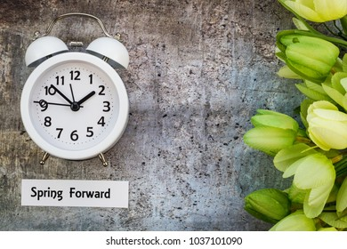 Spring Daylight Saving Time concept with with clock and green tulips on gray, flat lay, Spring Forward