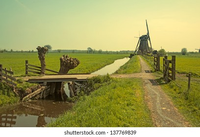 spring in dutch countryside
