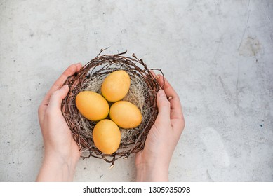 Spring Easter background. Female hands hold a nest with Easter colorful eggs. Top horizontal view abstract composition. Abstract background