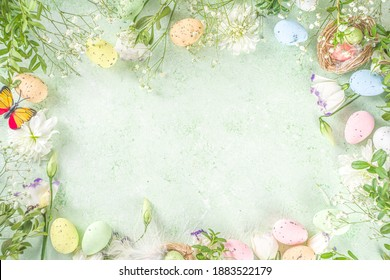 Spring Easter holiday top view  flat lay background with eggs in nests and spring flowers. Greeting card background with copy space.