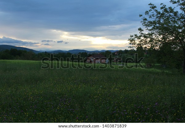 Spring evening scene: meadow full of colorful flowers that stand out in contrast to green grass, sunlight appearing through clouds, mountains in horizon.