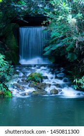from a spring falls a waterfall, passing through a pile of stones forming a river