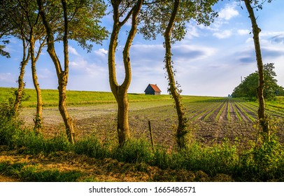 Spring farm field scene. Farm house field in spring. Spring farm field landscape. Farm field in springtime