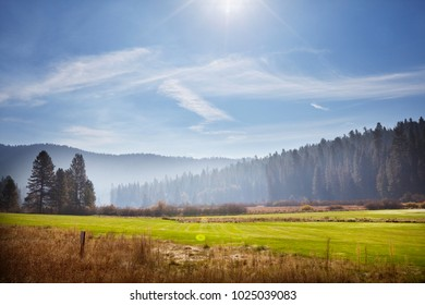 Spring field and blue background