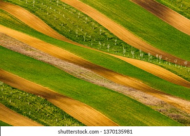 Spring field pattern, waves, lines in several shapes and colors. Very beautiful and unusual angle. Green and brown.