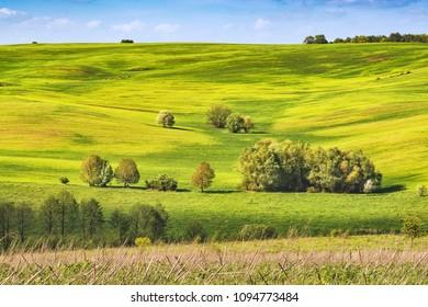 Spring fields covered with fresh grass. Ukraine, Europe. - Shutterstock ID 1094773484