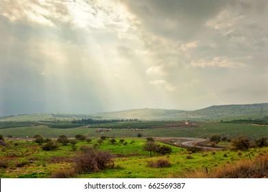 Spring Fields of Galilee, Israel