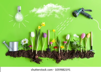 Spring flower bed garden with clouds, light bulb as the sun