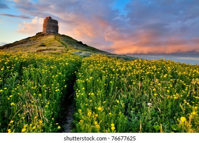 spring flower field with trail to castle tower bright vivid colors bright yellow pasture colorful spring meadow fairy tale landscape yellow flowers with path leading to ancient castle Sardinia Italy