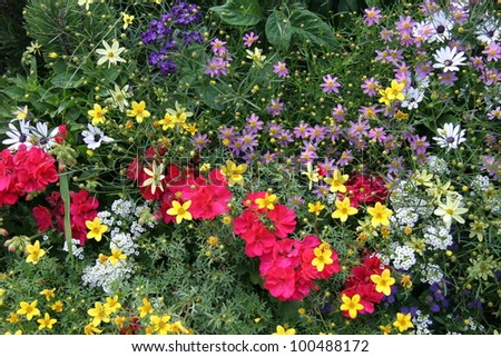 Spring flower garden various types flowers stock photo edit now spring flower garden with various types of flowers in red yellow white purple mightylinksfo