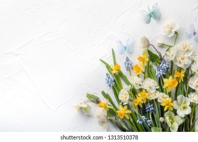 Spring flower on white background