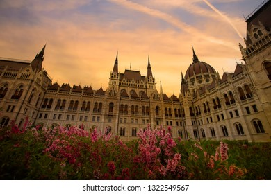 Spring flower with View of the Parliament Hungary ,Budapest
