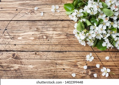 Spring flowering branch on wooden background. Apple blossoms Copy space.