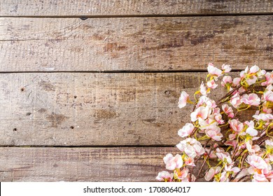 Spring flowering branch on wooden background. Apple or cherry blossoms on old rustic wood backdrop copy space