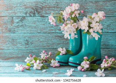 spring flowers in boots on wooden background