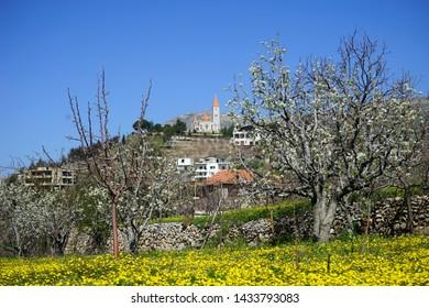Spring with flowers in Bsharri, Lebanon