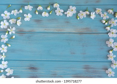 Spring flowers of cherry on a blue wooden background with a place for an inscription. Design for greeting card with cherry flowers. Template, blank for greeting banner, blog post with spring flowers