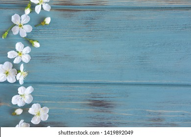 Spring flowers of cherry on a wooden background with a place for an inscription. Design for greeting card with cherry flowers. Template, blank for spring greeting banner, blog post with spring flower
