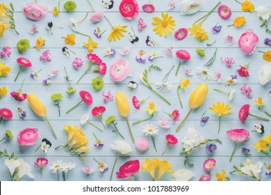 Spring flowers collection,buttercup,tulip,hyacinth,pansy,plum flowers.