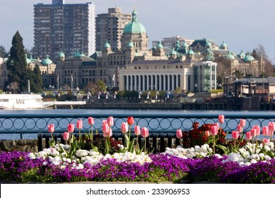 Spring flowers in front of Inner Harbour and Parliament Buildings, Victoria, BC, Canada