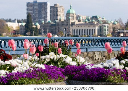 Spring Flowers Front Parliament Buildings Inner Stock Photo Edit