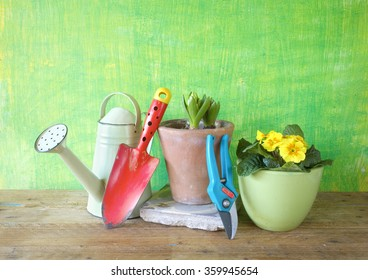 spring flowers and gardening tools, gardening concept,free copy space