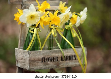 Spring flowers in green bottles in the garden. Easter decoration with spring flowers, narcissus blooms.