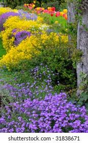 Spring Flowers - Mixed Bed (Vincas, Alyssum, Tulips)