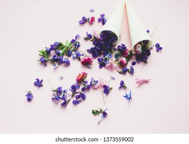Spring flowers on a pink background