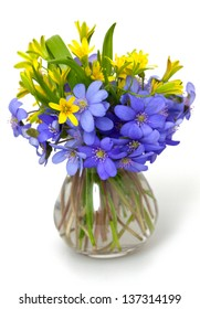 spring  flowers over white