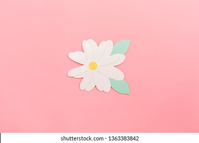 Spring flowers paper craftwork on a pink background
