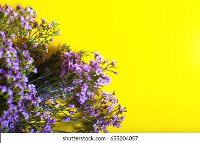 Spring flowers and yellow background